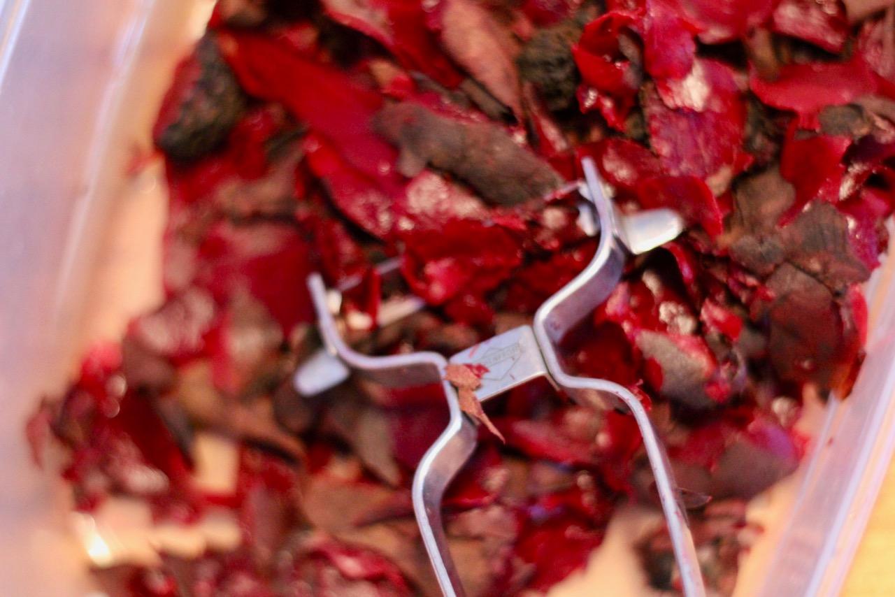 Wirtshausfuherer - Kochen wie der Wirt - Raeucherforelle mit rote Rueben Tatar – Gasthaus Beringer 5