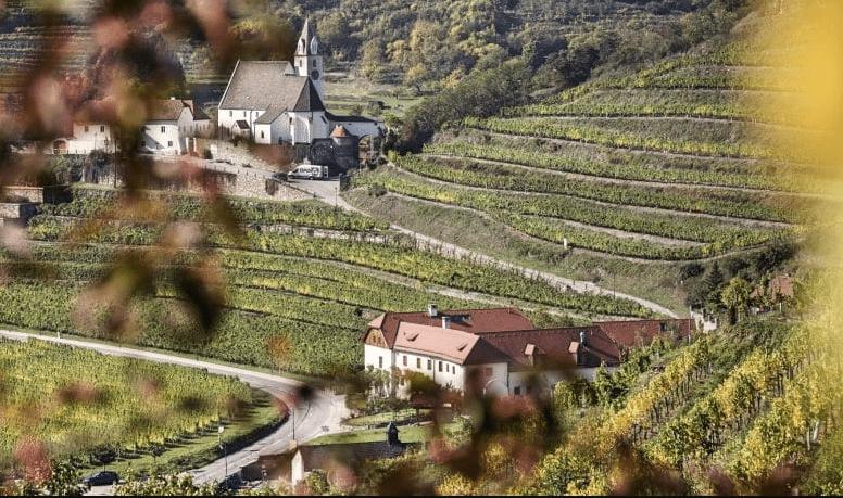 Weinhaus Nigl