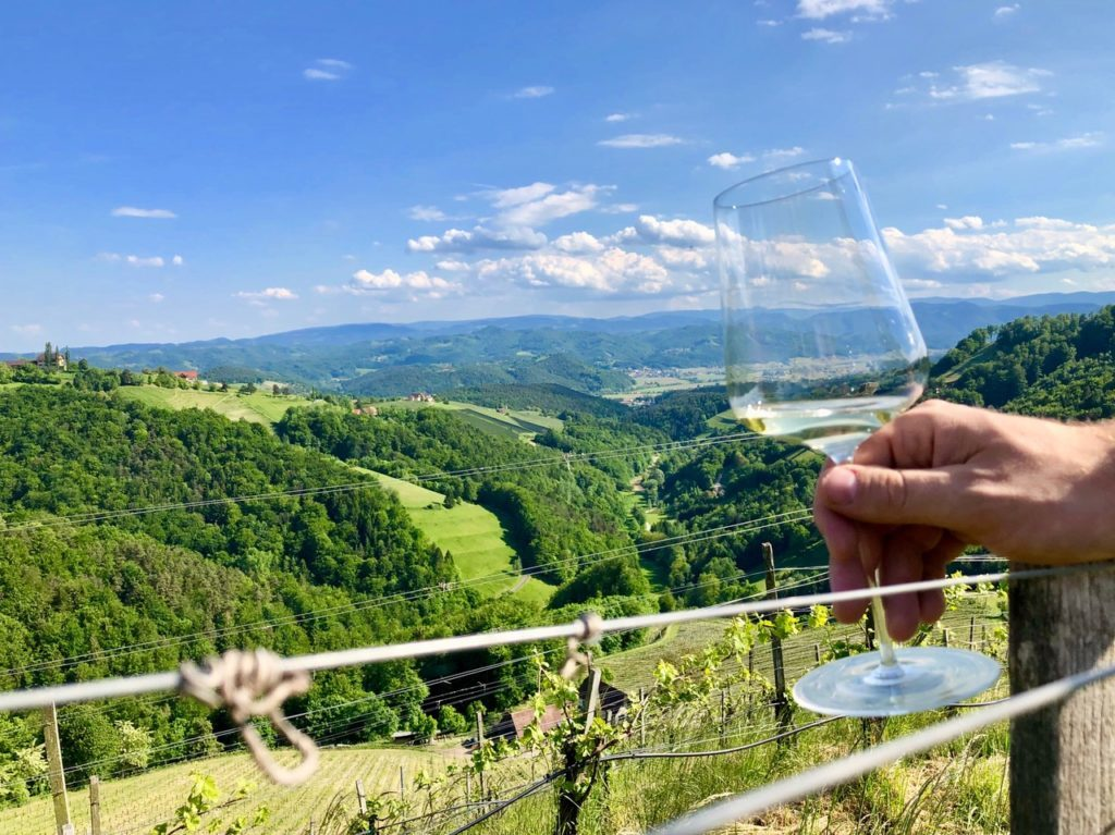 Sausal: Riesling rules