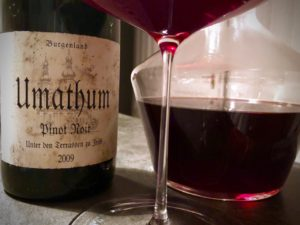 Der Pinot Noir 2009 Unter den Terrassen zu Jois von Josef Umathum ist ein großer Burgunder in perfekter Trinkreife.